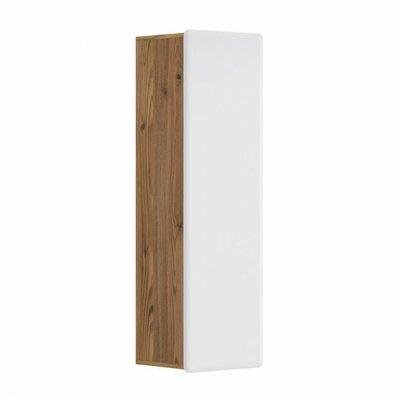 Spradley 1 Door Accent Cabinet Color: Brown