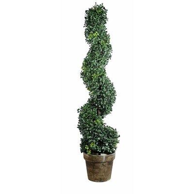 Coddington Pedestal Plant Stand