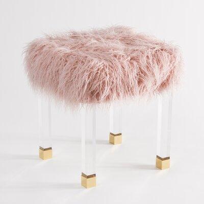 Nilsa Faux Fur Acrylic Accent Stool Color: Pink