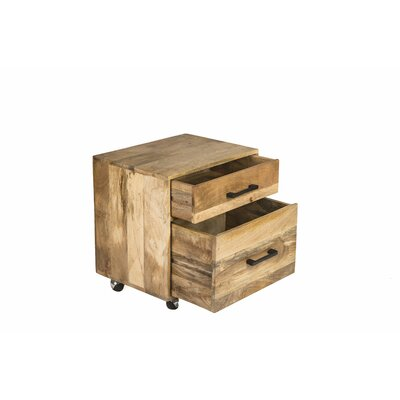 Beggs Office Storage 2 Drawers Accent Chest