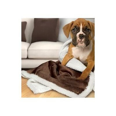 Axel Sherpa Reversible Microplush Pet Blanket/Throw Color: Beige