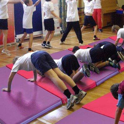 Folding Panel Gymnastics Exercise Yaga Floor Mat Color: Pink/Red