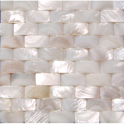 """12"""" x 12"""" Authentic SeaShell Tile Seamless Three Dimensional Basketweave A1 in White Mother of Pearl"""