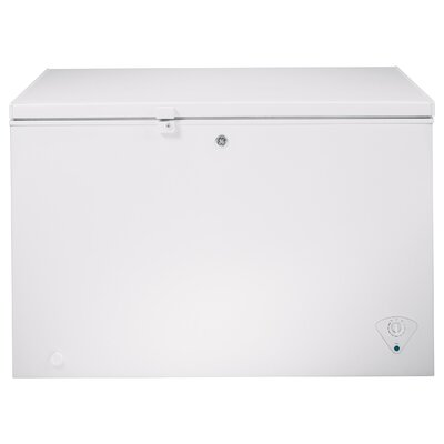 10.6 cu. ft. Energy Star Freezer