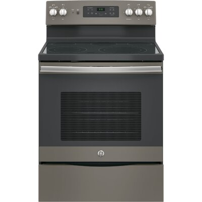 """30"""" Free-Standing Electric Range Finish/Color: Slate"""