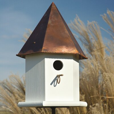 Deluxe 18 in x 10 in x 10 in Songbird House Finish: White with Brown Copper Roof