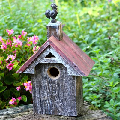 Cotton Blues Bird Barn 16 in x 11 in x 6 in Birdhouse