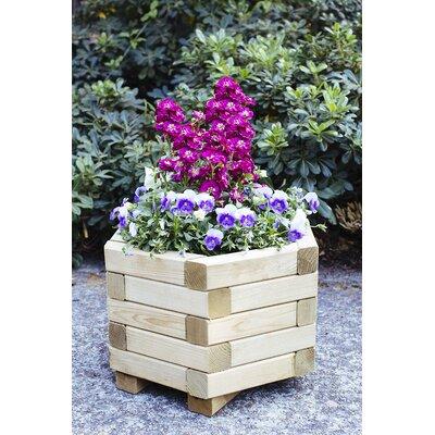 "Hexagona European Spruce Planter Box Size: 14"" H x 24"" W x 24"" D"