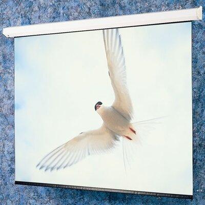 """Matte White: Targa Electric Screen - HDTV 65"""" diagonal Size: 133"""" diagonal"""