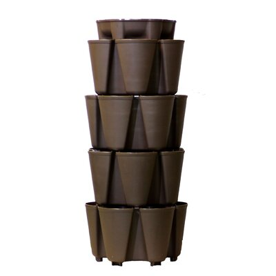 4 Tier Plastic Vertical Planter Color: Chocolate Brown