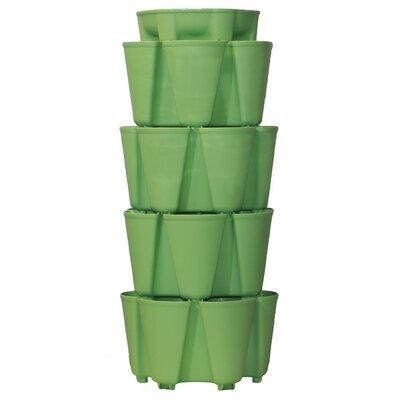 4 Tier Plastic Vertical Planter Color: Luscious Green