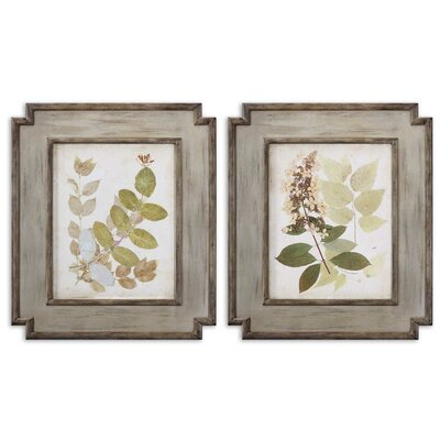 Uttermost Natures Collage by Grace Feyock 2 Piece Framed Painting Print Set