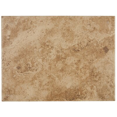 "Cromwell 9"" x 12"" Ceramic Field Tile in Amber"