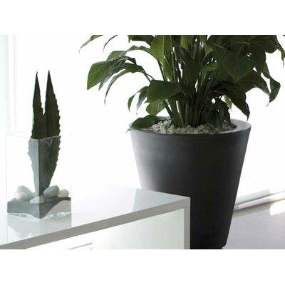 Vondom Aigua Cono Round Flower Pot Planter with Self-Watering