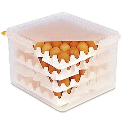 Contacto Bander Frischhaltebox Gastronorm-System