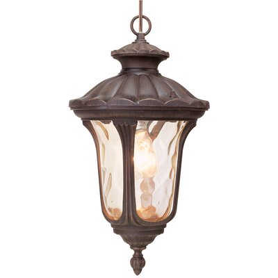 Livex Lighting Oxford 1 Light Outdoor Hanging Lantern