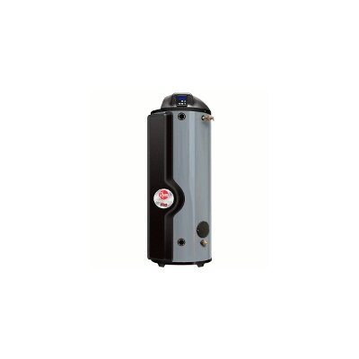 Professional Spiderfire 100 Gallon Sealed-Combustion Natural Gas-Fired Commercial Water Heater