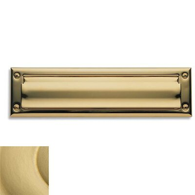 13 in x 3.5 Mail Slot Color: Satin Brass