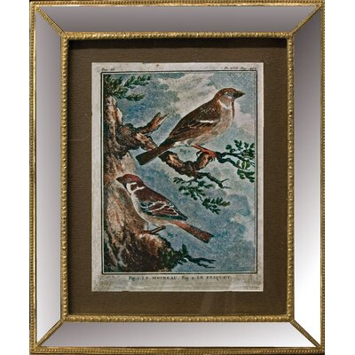 Alterton Furniture Spring Birds Framed Art Print