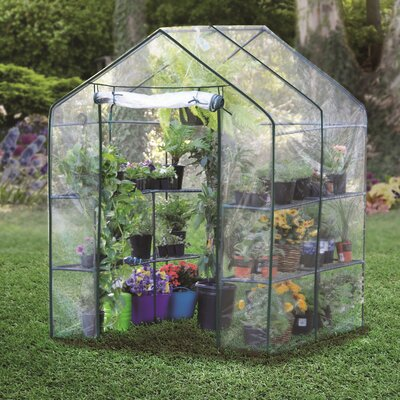 4.86 Ft.W x 4.79 Ft. D Hobby Greenhouse