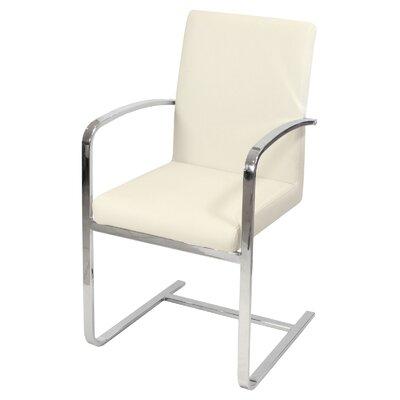 Febland Group Ltd Cantilever Chair