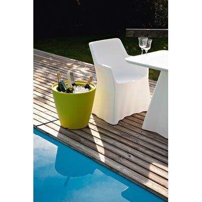 Domitalia Phantom Dining Arm Chair