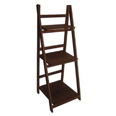 Ladder Bookcase Finish: Brown