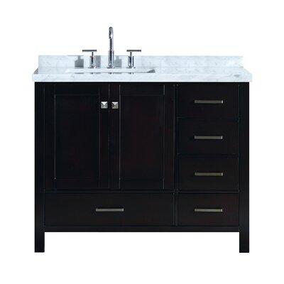 """Utley 43"""" Wood Base Single Bathroom Vanity Set Base Finish: Espresso"""
