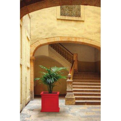 "Fairfield Plastic Planter Box Color: Poppy Red, Size: 28"" H x 28"" W x 28"" D"