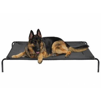 the go pet club elevated cooling cot pet bed review - Raised Dog Beds