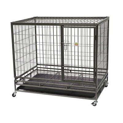 """Steel Pet Crate Size: Medium (32"""" H x 37"""" W x 24.5"""" L)"""