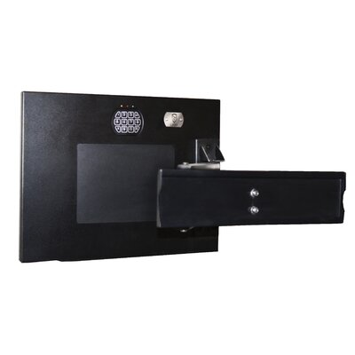 TV Mount Electronic Lock Wall Safe