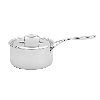 5-Plus Stainless Steel Sauce Pan Size: 2 Qt