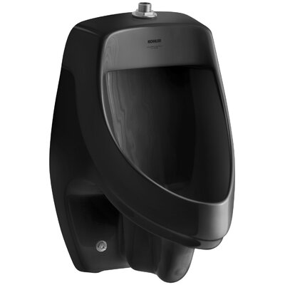 Dexter Siphon-Jet Wall-Mount 1/2 GPF Urinal with Top Spud Finish: Black Black