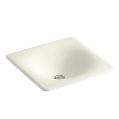Iron Tones Metal Rectangular Drop-In Bathroom Sink Sink Finish: Biscuit