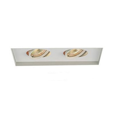 "WAC Lighting Multi Spot 18"" Recessed Kit"