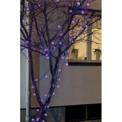 Konstsmide Glühbirnen-Lichterkette 40-flammig