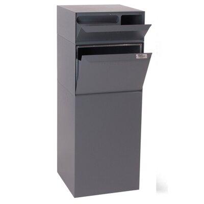 Vault 1 Unit Parcel Locker Color: Gray