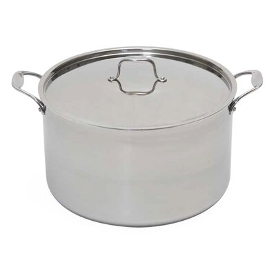 Stock Pot with Lid Size: 12-qt.