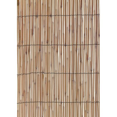 Reed Fencing Height: 78""