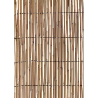 6.6' x 13' Reed Fencing