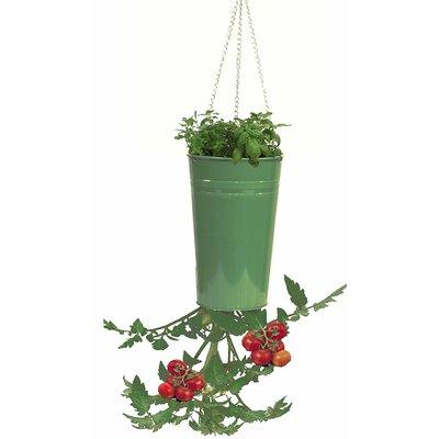 Galvanized Steel Hanging Planter Color: Apple Green