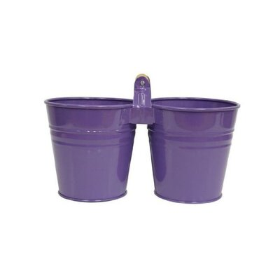Galvanized Steel Pot Planter Color: Violet