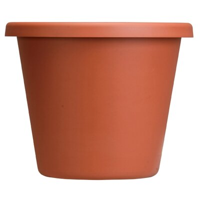 Pot Planter (Set of 24) Size: 6'' H x 9'' W, Color: Clay