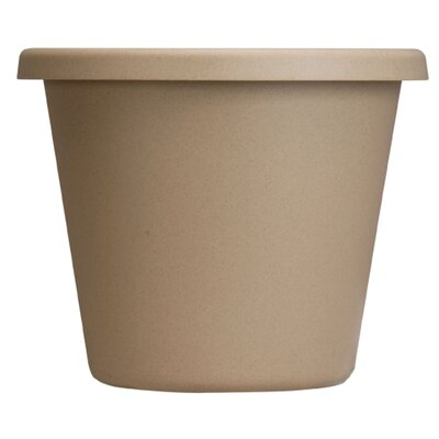 Pot Planter (Set of 24) Size: 6'' H x 9'' W, Color: Sandstone