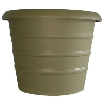Marina Pot Planter (Set of 10) Size: 6.9'' H x 8'' W, Color: Slate Green