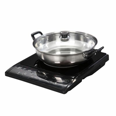 Induction Cooker with Cooking Pot