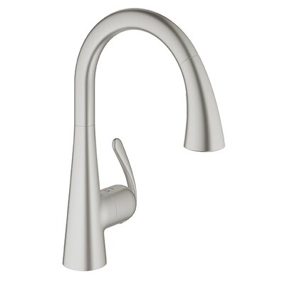 Ladylux Single Hole Kitchen Faucet Finish: Supersteel