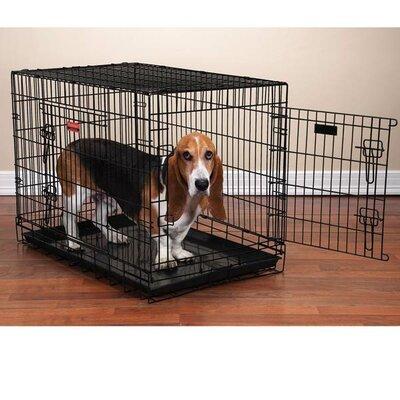 "Everlasting Folding Pet Crate Size: Large (31"" H x 42"" W x 28"" L)"