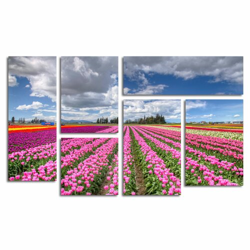 'Tulip Field' by Pierre Leclerc 6 Piece Canvas Art Set